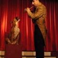 singin-dog